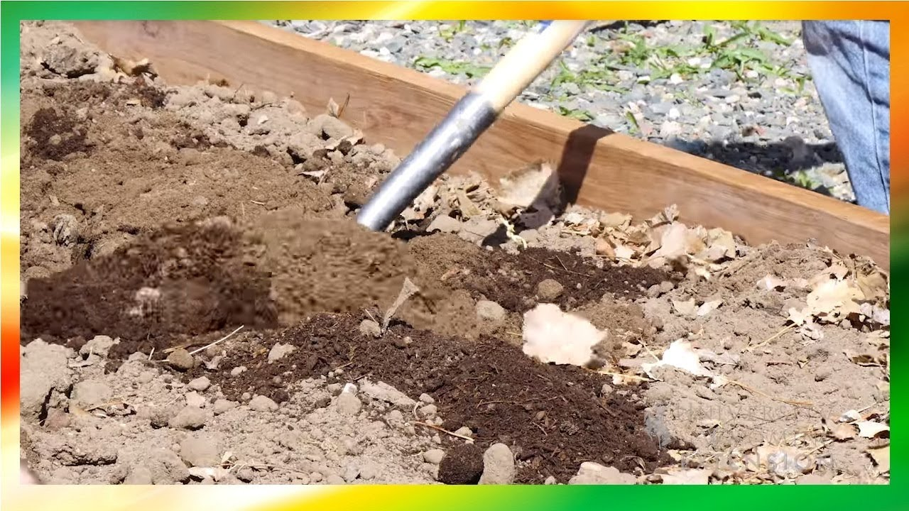 Raised Bed Soil Mix – (Recipe for Raised Bed Soil Mix and Recommendations)