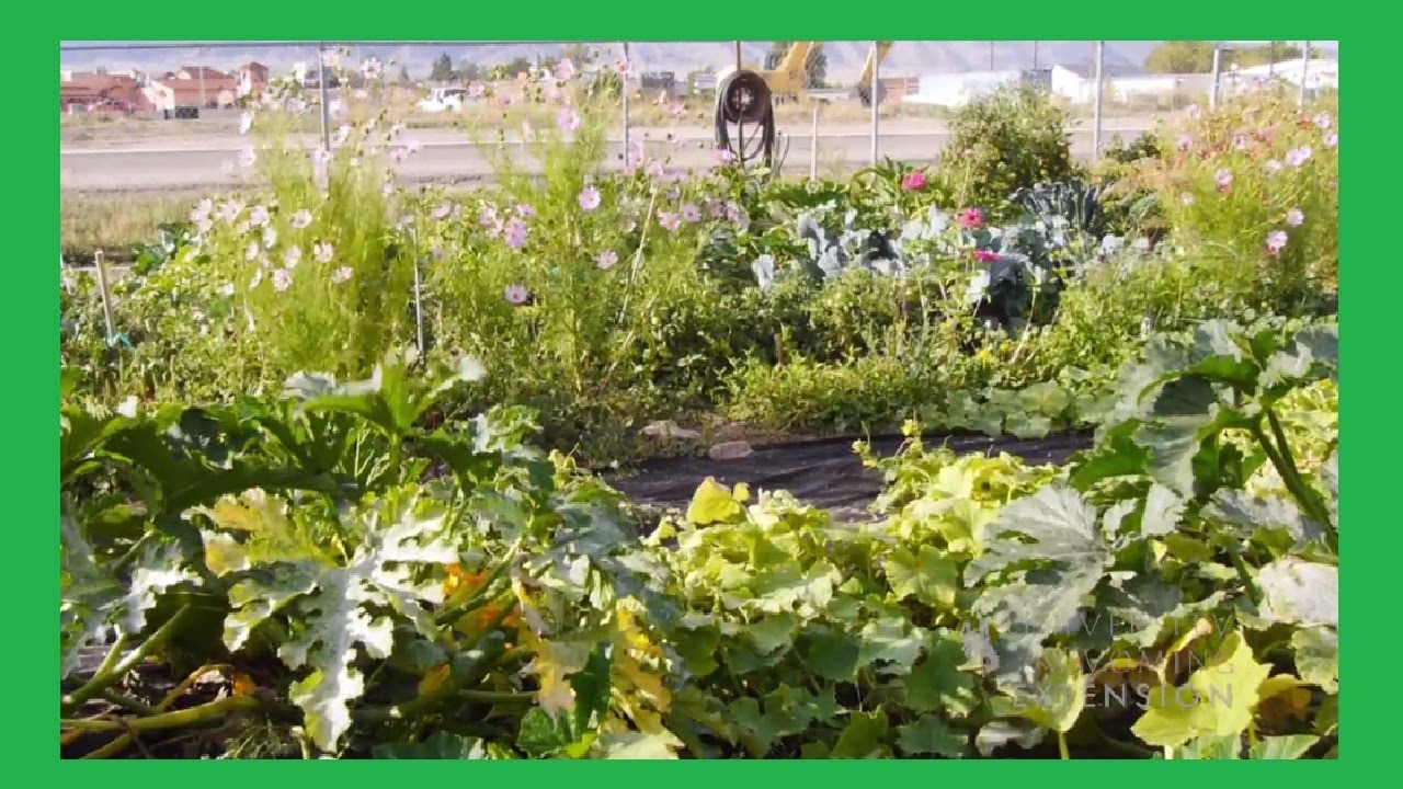 Vegetable Garden Rotation Planning and Management